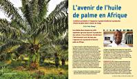L_avenir_de_l_huile_de_palme_en_Afrique_par_Meindert_Brouwer