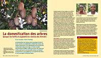 La_domestication_des_arbres_par_Meindert_Brouwer