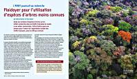 Plaidoyer_pour_l_utilisation_d_especes_d_arbres_moins_connues_par_Meindert_Brouwer