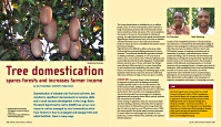 Tree_domestication_by_Meindert_Brouwer